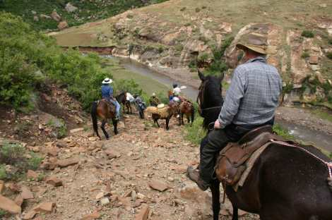 Oncoming traffic (donkey with load) on mountain path