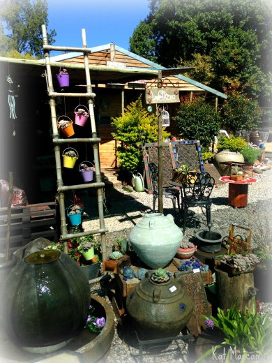 Garden decor galore at Desert Pots